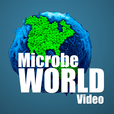MicrobeWorld Video show