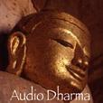 Audio Dharma show