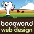 The Boagworld UX Show show
