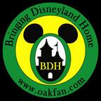 Bringing Disneyland Home show