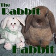 The Rabbit Habbit show