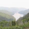 North Georgia Community Resources show