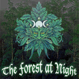 The Forest at Night show