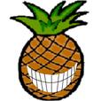 Hawaiian Punchlines show