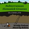 Subterranean Homesick Grooves show