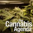 The Cannabis Agenda Podcast show
