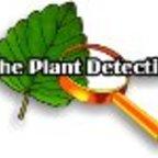 Plant Detective show
