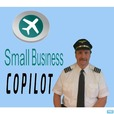 Small Business Copilot show