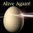 Alive Again - Pet Reincarnation on Pet Life Radio (PetLifeRadio.com) show
