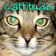 Cattitude -  Cat podcast about cats as pets  on Pet Life Radio (PetLifeRadio.com) show