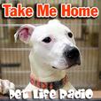 Take Me Home - Pet Adoption and Animal Rescue - Pets & Animals on Pet Life Radio (PetLifeRadio.com) show