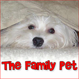 The Family Pet - Pets & Animals on Pet Life Radio (PetLifeRadio.com) show