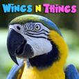 WingsNThings - Birds & Parrots as Pets - All About Pet Birds - Pets & Animals on Pet Life Radio (PetLifeRadio.com) show