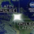 Latin Pulse show