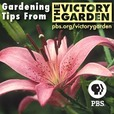 The Victory Garden | PBS show