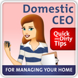 Domestic CEO's Quick & Dirty Tips to Managing Your Home show