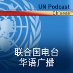 联合国电台 show