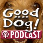 Good Dog show