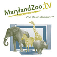 MarylandZoo.TV show