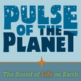 Pulse of the Planet Podcasts show