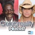 VH1 Celebreality (Video) show
