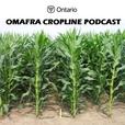 CropLine Podcast show