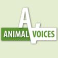 Animal Voices show