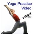 Yoga Practice Video - Yoga Vidya show