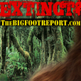 Extinct? - from the Bigfoot Report show
