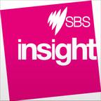 Insight Podcast show