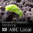 Adelaide's Talkback gardening show