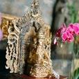 Ayurveda and Vedic Living show