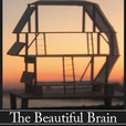 Podcasts – The Beautiful Brain show