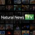 NaturalNews.tv Podcast show