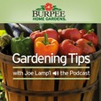 Burpee Home Gardens Tip of The Week Podcast show