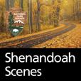 Shenandoah Scenes show