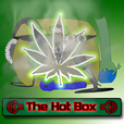 The Hot Box show