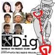 Dig show