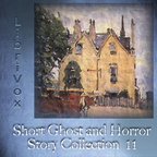 Short Ghost and Horror Collection 011 by VARIOUS show
