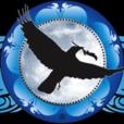 Medicine Crow show