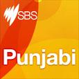 Punjabi show