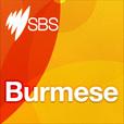 Burmese show