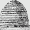 Beekeeping Podcast – Garreson Publishing show