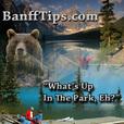 Banff National Park-Videos show