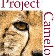 Project Camelot show