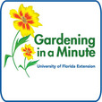 Gardening in a Minute show