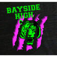 Bayside High - Extracurricular Activities show