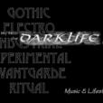 The sounds of DARKLIFE show
