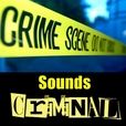 Sounds Criminal show