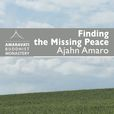 Finding the Missing Peace by Ajahn Amaro (+ ebook)  show